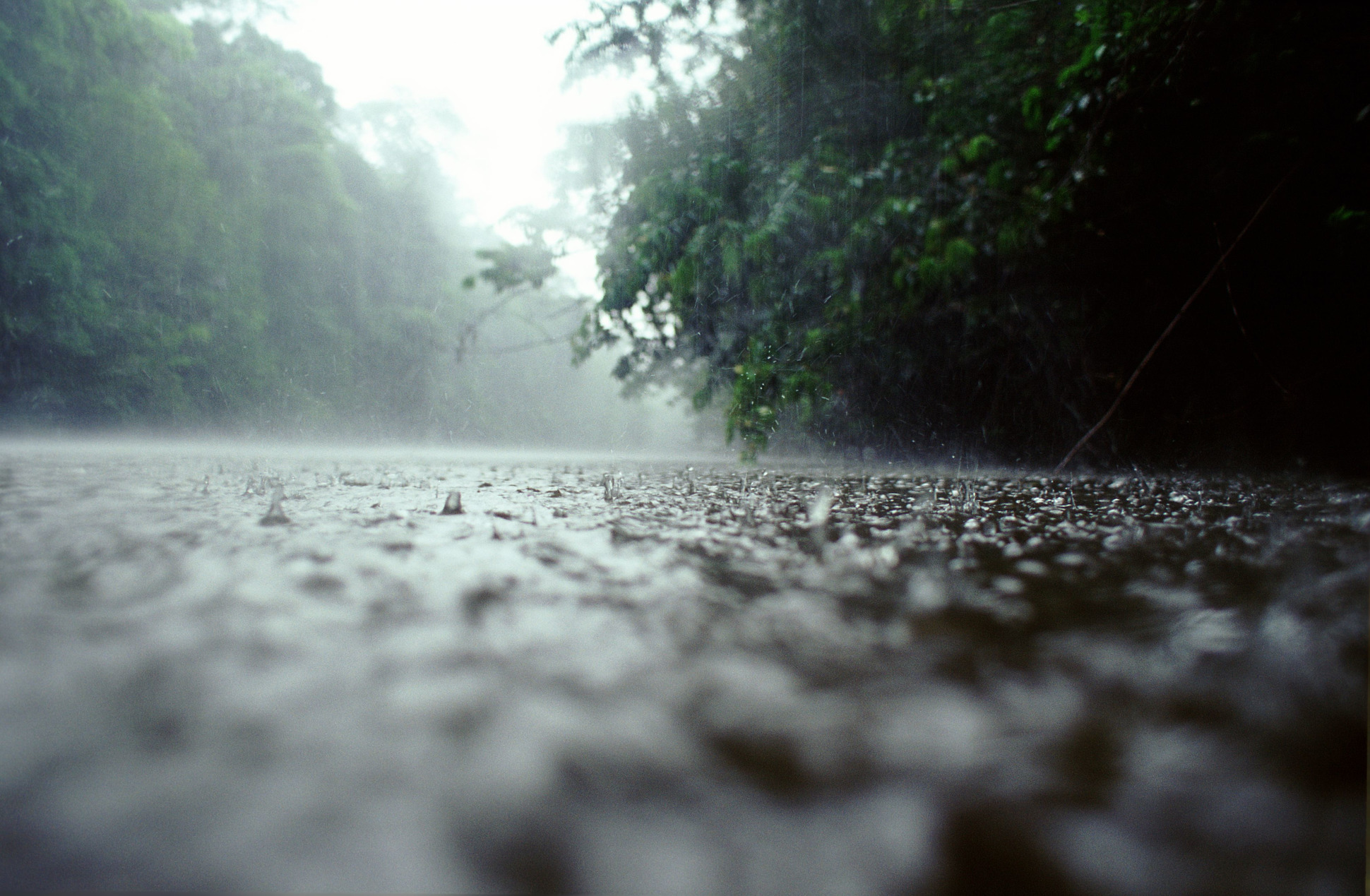 the winter weather in 2014 2015 has had an impact on the garden pond