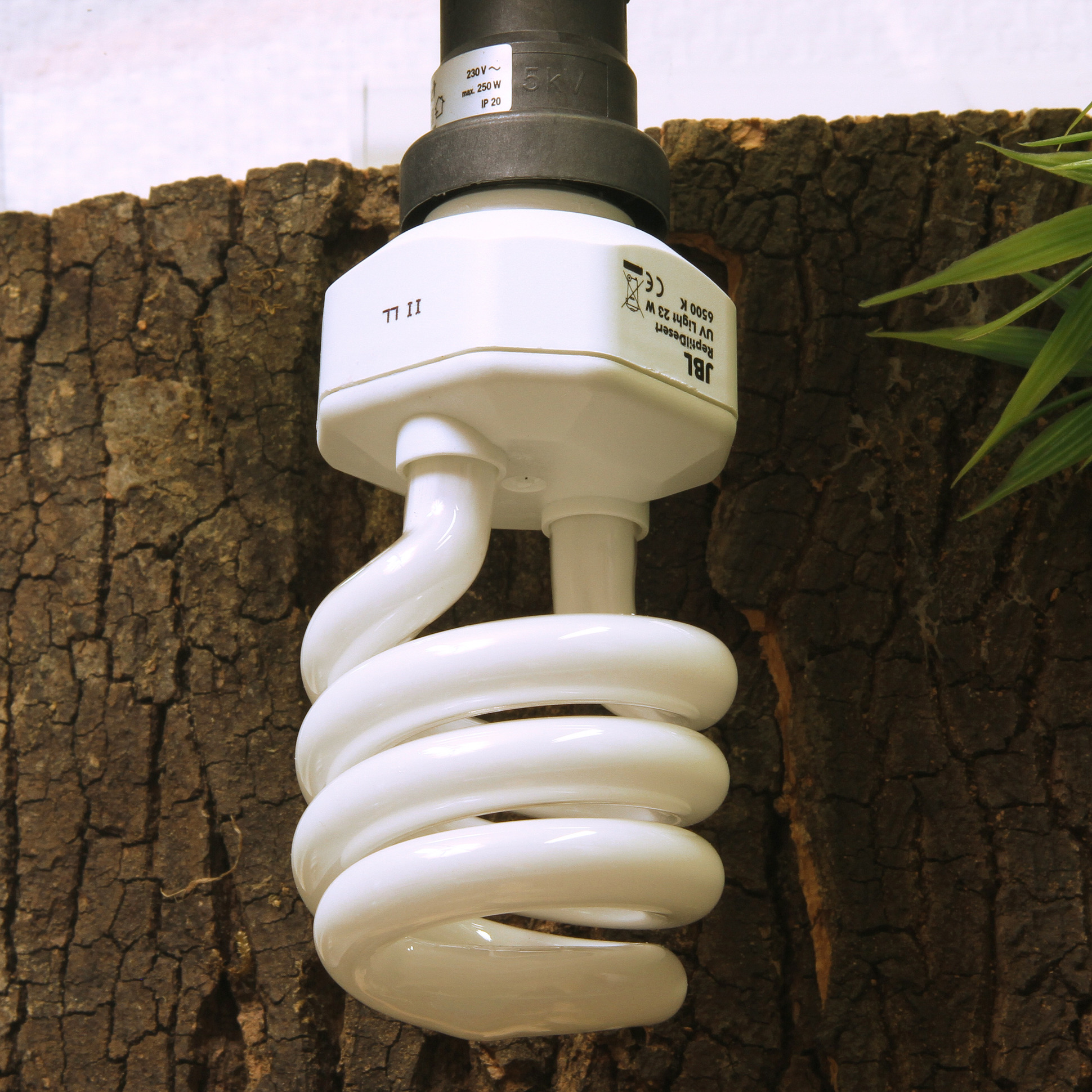 Jbl Reptildesert Uv Light Fluorescent Bulbs Diagram Lamp Eurolite 23w Has A Img Src Images Container W137 H137 65125 Alt