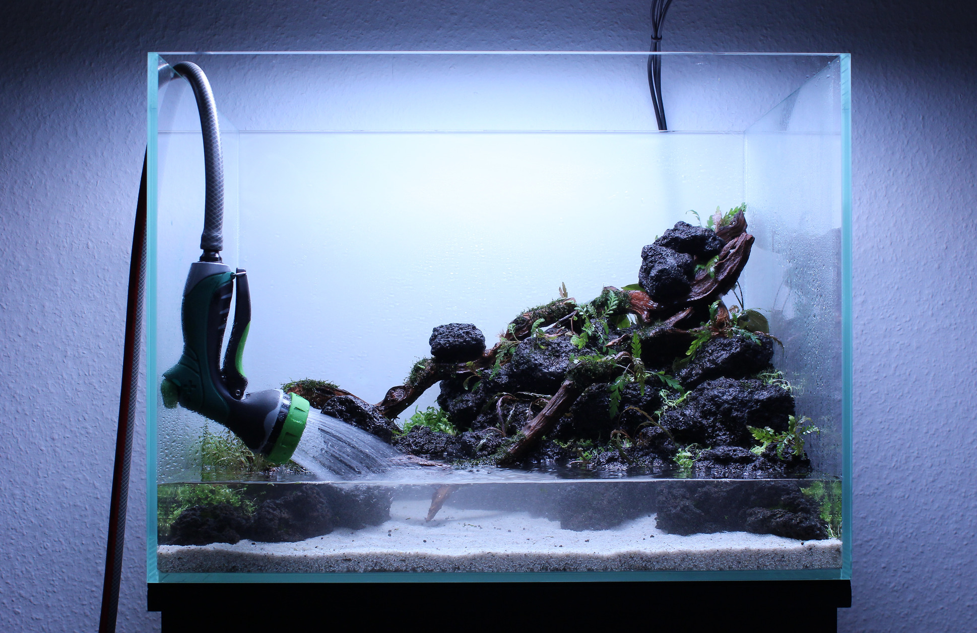 the world s best aquascapers use jbl products
