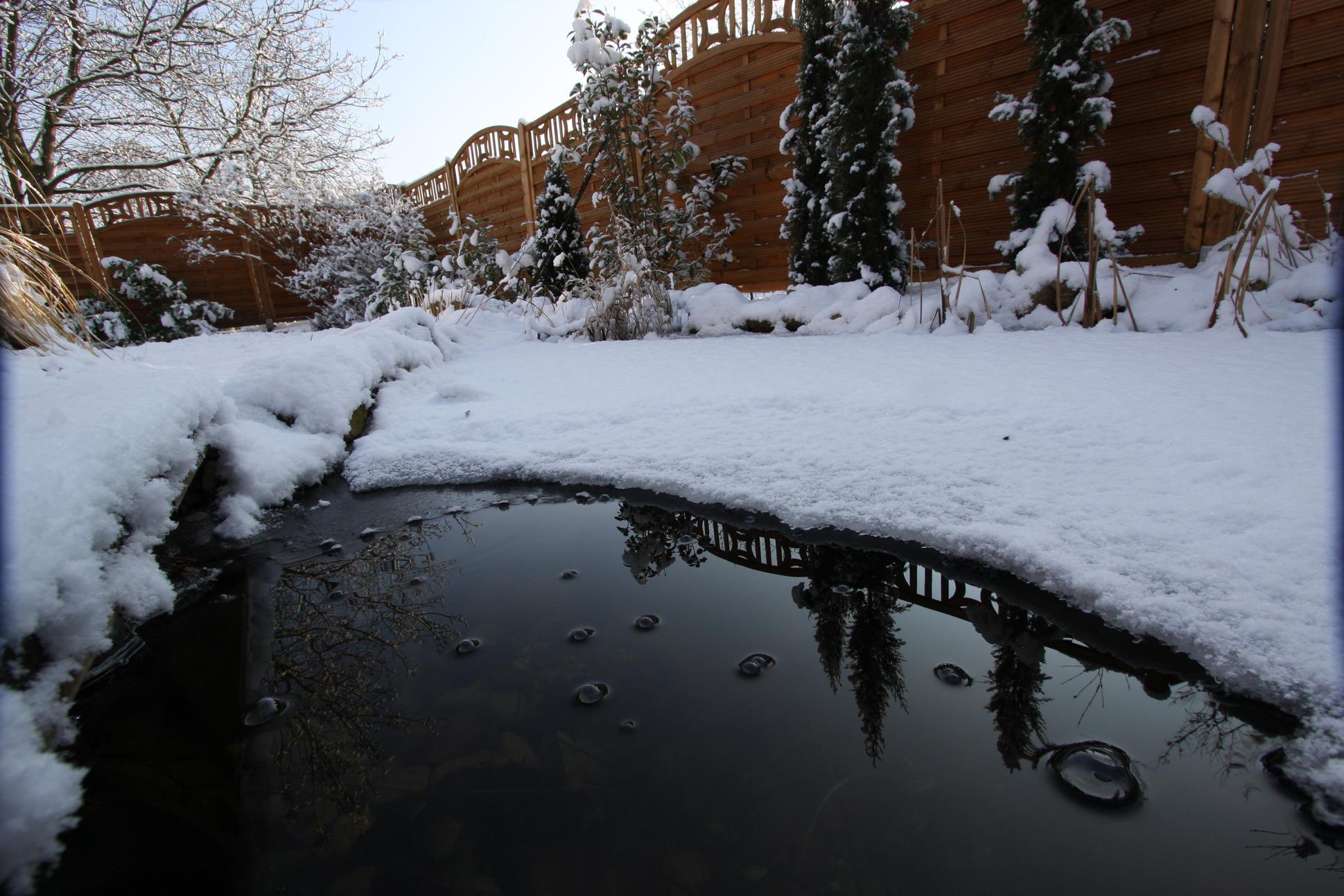 Achtung frost ist ihr teich fit f r den winter for Gartenteich algenfrei