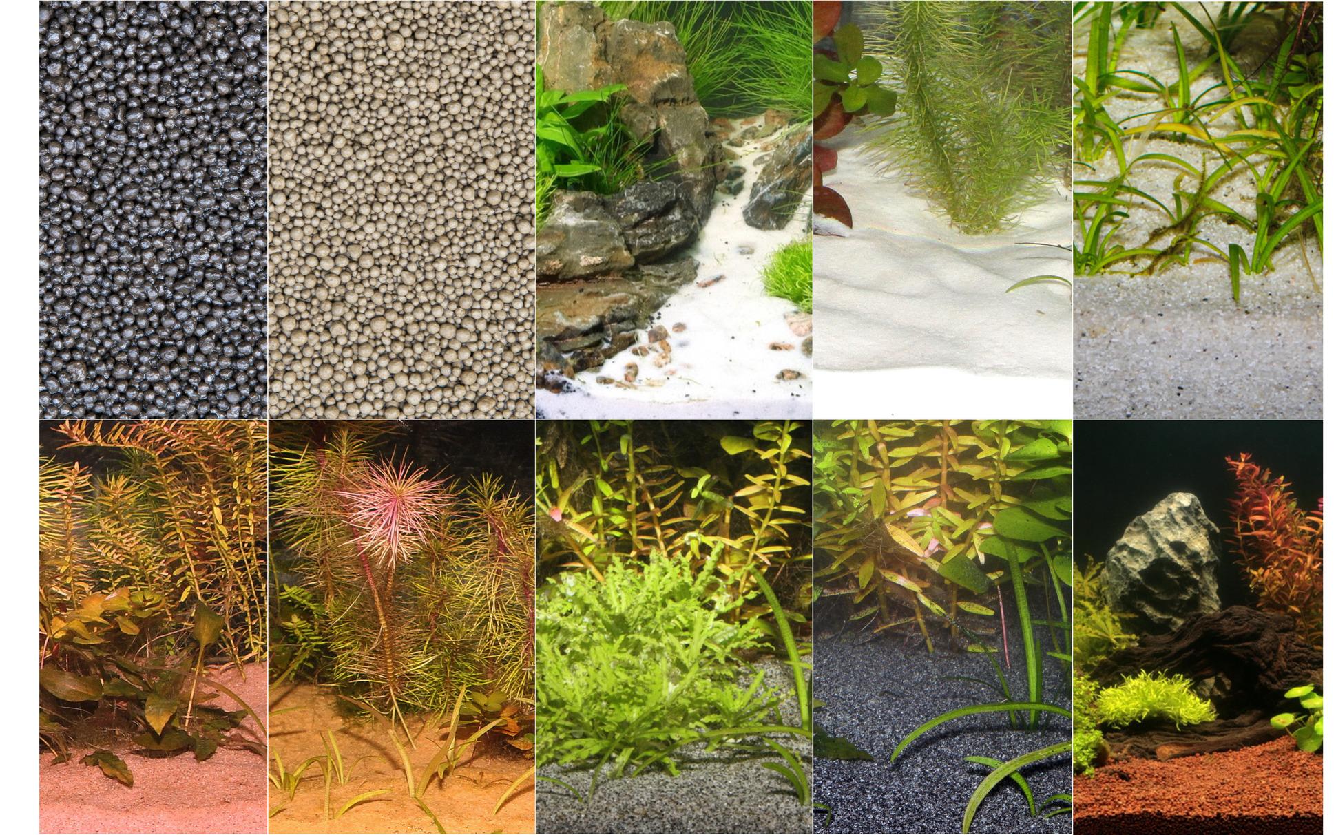 Choosing Your Substrate Combining Several Varieties