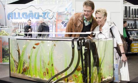 German Biotope Aquarium Contest 2015