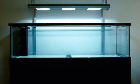 meerwasseraquarium einrichten. Black Bedroom Furniture Sets. Home Design Ideas
