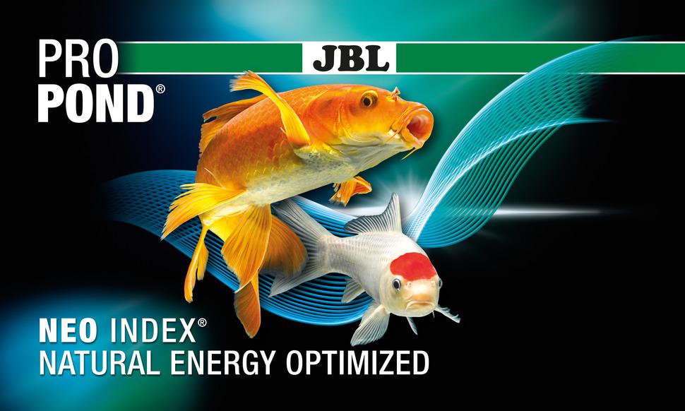 """Képtalálat a következőre: """"jbl neo index"""""""